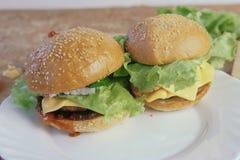 2 различных домодельных бургера на белой плите Стоковые Фотографии RF