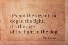 Размер Twain собаки стоковое изображение rf