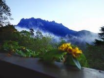 Размещенный в восточной Малайзии, Борнео двадцатое большинств видная гора в мире стоковое изображение rf