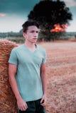 Разминка сельской местности на изображении стиля контраста высоты захода солнца стоковое фото rf