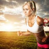 Разминка фитнеса женщины - бежать пшеничное поле стоковое изображение