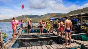 Размножение рыб вахты туристов в бассейнах на плавая деревне акции видеоматериалы