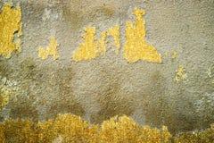 размывание конкретной поверхности было повреждено грунтовыми водами стоковые изображения rf