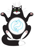 Размышлять кота Стоковые Изображения