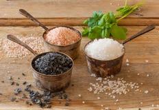 3 разного вида соли Стоковые Фото
