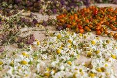 Разнообразие высушенные травы и ягоды на предпосылке скатерти Травы чая стоковые фотографии rf