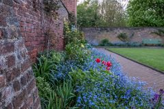 Разнообразие красочные полевые цветки на дисплее в Eastcote расквартировывают сады, исторический огороженный сад поддерживаемый в стоковое фото rf