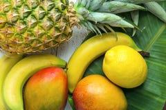 Разнообразие лист ладони лимонов бананов манго ананаса тропических плодоовощей зеленых на белой древесине Planked Стоковая Фотография