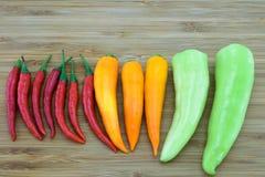 разнообразие перцев chili Стоковое Фото