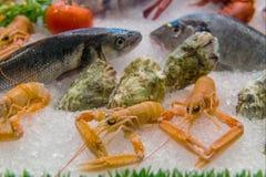 Разнообразие продукта моря в льде Стоковая Фотография RF