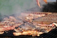 Разнообразие различного вида стейков мяса, фрикаделек, shish kebab, филе, бургеров и сосисок с хлебом на гриле внешнем Стоковое Изображение RF