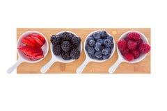 Разнообразие свежих зрелых ягод осени Стоковое Изображение