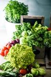 Разнообразие свежих овощей Стоковые Фото