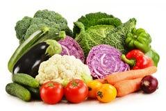 Разнообразие свежих органических овощей на белизне стоковые изображения rf