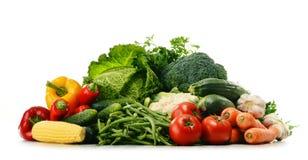 Разнообразие свежих органических овощей на белизне стоковое фото