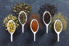 Разнообразие свободных высушенных листьев чая стоковые изображения rf