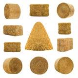 Разнообразие сенами изолированными на белизне стоковое фото