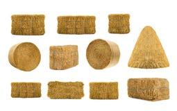 Разнообразие сенами стоковая фотография