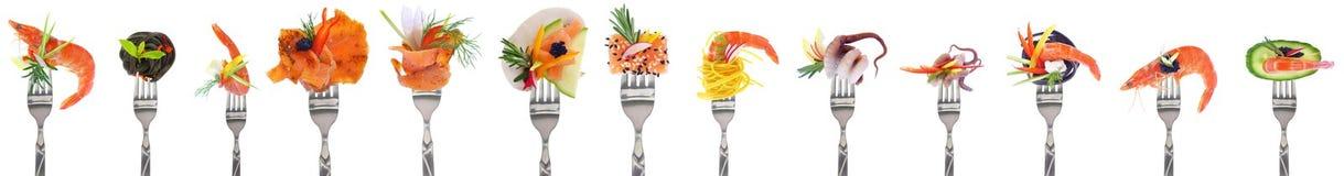 Разнообразие стартеров морепродуктов - белая предпосылка стоковое изображение rf
