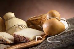 разнообразие сыра Стоковые Фото