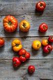 Разнообразие томатов деревенского и бифштекса для органических среднеземноморских овощей Стоковое Фото
