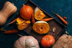 Разнообразие тыкв различных размера, формы и цвета Стоковые Изображения RF