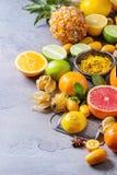 Разнообразие цитрусовых фруктов Стоковые Изображения
