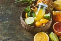 Разнообразие цитрусовых фруктов Стоковое Фото