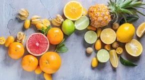 Разнообразие цитрусовых фруктов Стоковые Фото