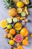 Разнообразие цитрусовых фруктов Стоковое Изображение RF