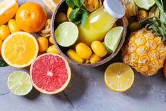 Разнообразие цитрусовых фруктов Стоковые Изображения RF