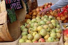 Разнообразие яблок в рынке ` s фермера Стоковая Фотография RF