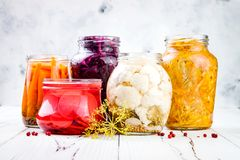 Разнообразие Sauerkraut сохраняя опарникы Домодельное kraut бураков красной капусты, kraut турмерина желтое Заквашенная еда стоковые фото