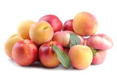 разнообразия больших свежих персиков на белизне изолировали предпосылку стоковое фото