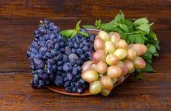 2 разнообразия виноградины Стоковая Фотография