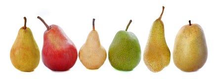 Разнообразия груш Стоковые Фотографии RF