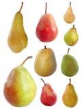 Разнообразия груш Стоковые Изображения