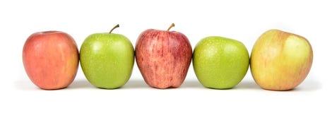 Разнообразия Яблока Стоковые Изображения