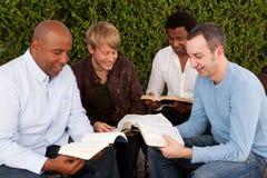 Разнообразная группа в составе люди изучая совместно Стоковое фото RF