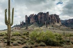 Разнообразная красота ландшафта пустыни Аризоны Стоковые Фото