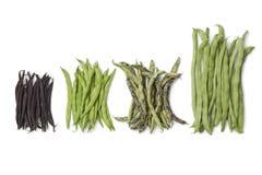 Разнообразность свежих фасолей стоковое изображение