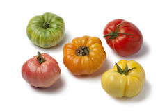 Разнообразность томатов beefheart стоковое изображение rf