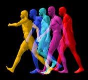 Разнообразные ходоки Стоковая Фотография RF