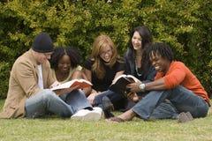 Разнообразные чтение и изучать группы людей стоковое изображение