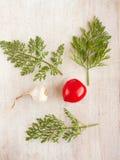 2 разнообразных овоща - чеснок и томат Стоковые Фотографии RF