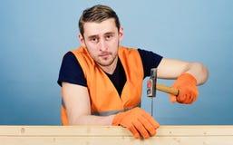 разнорабочий принципиальной схемы предпосылки изолированный над белизной Плотник, woodworker на спокойной стороне бить молотком н стоковое фото rf