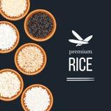 Разные виды риса в плитах и шарах на темной предпосылке Верхнее veiw Basmati, одичалый, длинный коричневый цвет, arborio, суши Стоковое Изображение