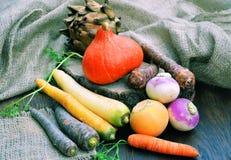 разные виды овощи Стоковые Изображения