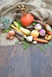разные виды овощи Стоковое фото RF