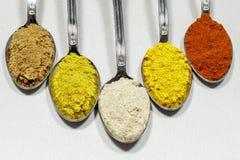 Разные виды порошка condiments Стоковое Изображение